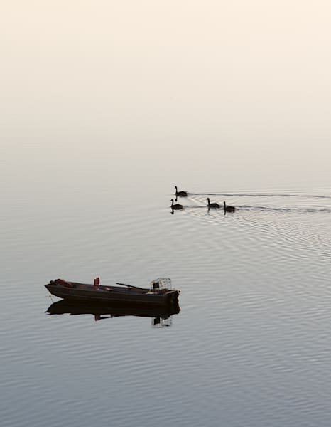 Early Morning Boat Geese Photography Art by Barb Gonzalez Photography