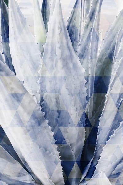 Orl 10013 Summer Succulent Symphony 2 Art | Irena Orlov Art