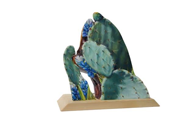 Cactus Y Mas