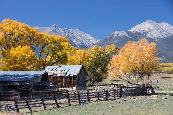 Colorado Fall Colors Art Photographs Print