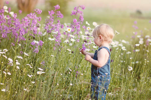 Pickin' Wildflowers