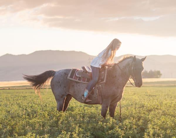 Sunset Ride Art | Mandy Jane Williams Art