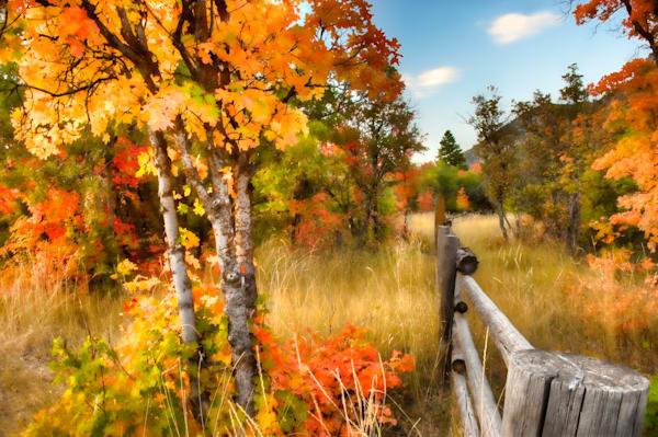 Nebo Painted Autumn