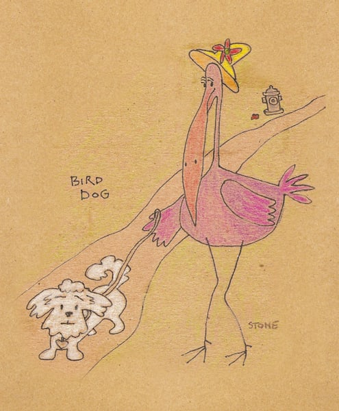 Bird Cartoons by Debbie Stone