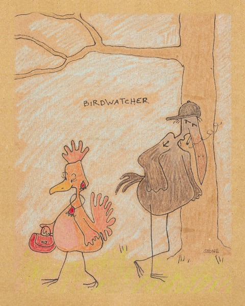 Buy a funny Birdwatcher cartoon for a  whimsical wall.