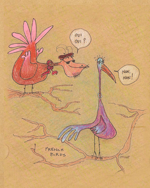 Buy a funny French Birds cartoon for a  whimsical wall.