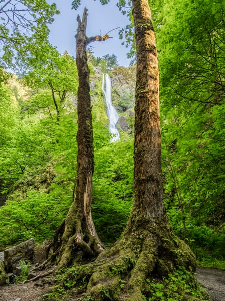 Columbia River Gorge  IMG3279-HDR-2
