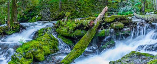 Columbia River Gorge  IMG3363-Pano