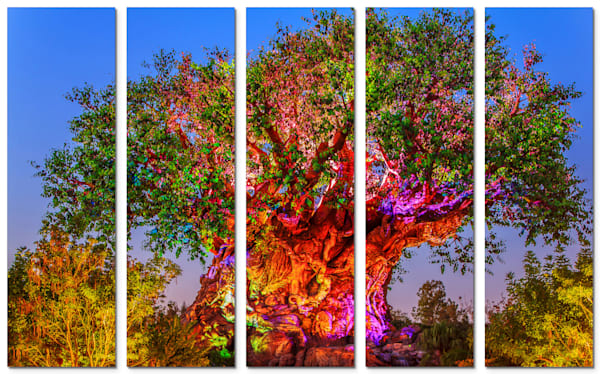 5-Piece Disney Canvas Wall Art - Tree | William Drew