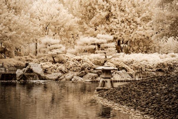 Dsf2177 Edit Edit Photography Art | frednewmanphotography