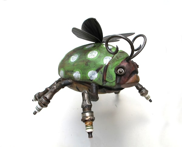 spotted spark bug