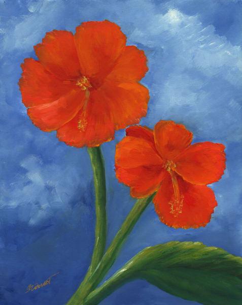 Brilliant Bloom
