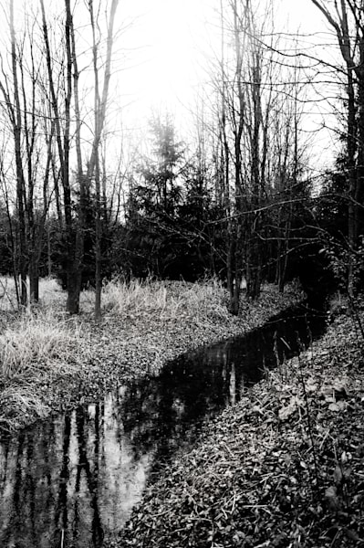 Black & white photograph of a river and tree reflections for sale as fine art by Sage & Balm
