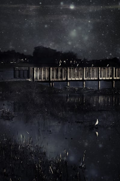 Starry Bridge Photography Art | Sage & Balm Photography