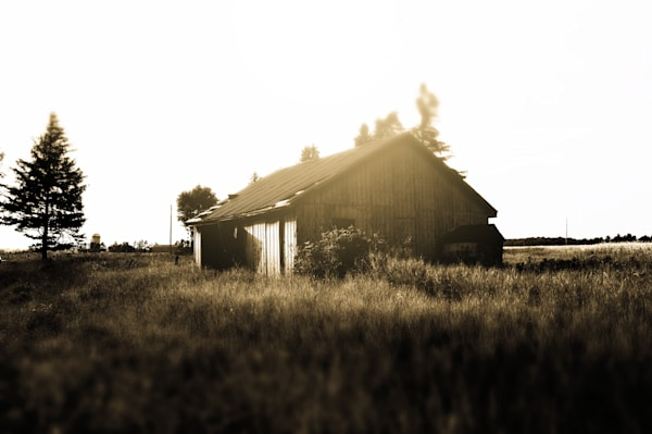 Black & white tilt-shift, rural decay photograph of an abandoned barn or shed in rural Ontario, for sale as fine art by Sage & Balm