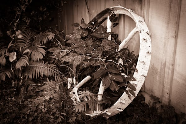 Sepia country and ruralscape photograph of an antique wagon wheel for sale as fine art by Sage & Balm