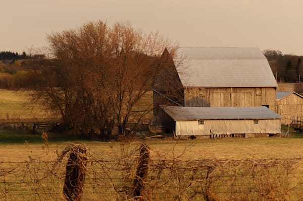 Muted tone country and ruralscape photograph of a barn at dusk in rural Ontario, for sale as fine art by Sage & Balm