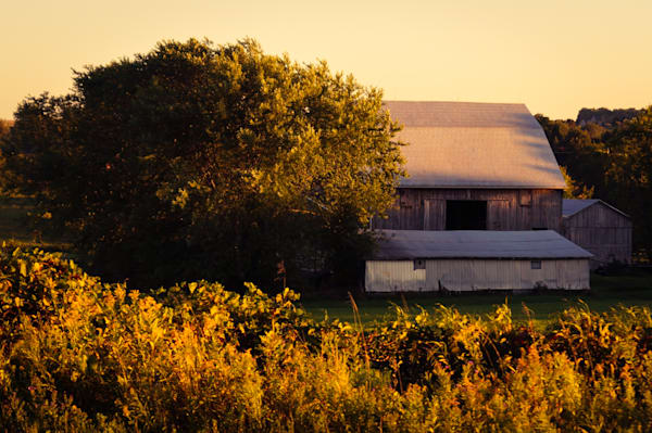 Color country & rural landscape photograph of a barn in the Autumn sunset in rural Ontario, for sale as fine art by Sage & Balm