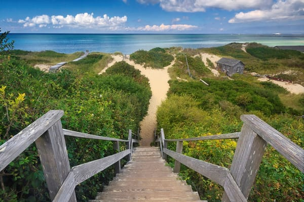 """Steps Beach"" - Fine Art Large Nantucket Coastal Dunes Photograph"