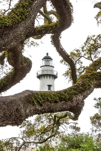 St. Simons Lighthouse with Oak