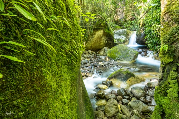 fine art photograph of green mossy landscape with waterfall in the background