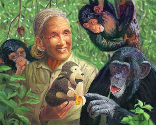 Oil painting portrait of Jane Goodall by Steve Simon