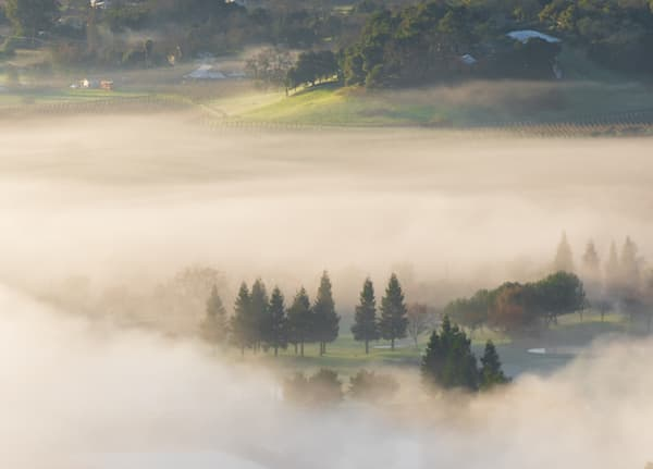 Napa Valley Fog From Above Photography Art   Barb Gonzalez Photography