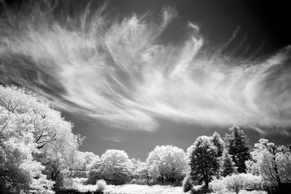 Dsf1452 Edit Edit Photography Art | frednewmanphotography