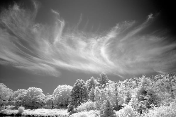 Dsf1456 Edit Photography Art | frednewmanphotography
