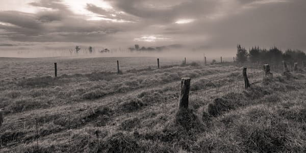 Nature Photography | Fields of Waikii by Peter Tang