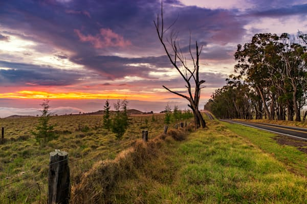 Big Island Photography | Old Saddle Road by Peter Tang