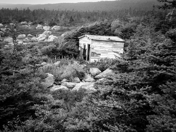 Black & white photograph of an abandoned fisherman's shack off the coast of Cape Spear, Newfoundland, for sale as fine art by Sage & Balm