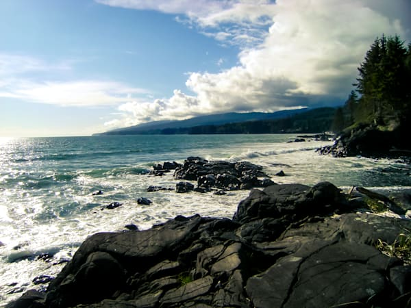 Rugged Pacific Beauty Photography Art | Sage & Balm Photography