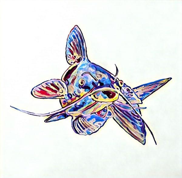 Catfish Variation 1 by Erin McNutt