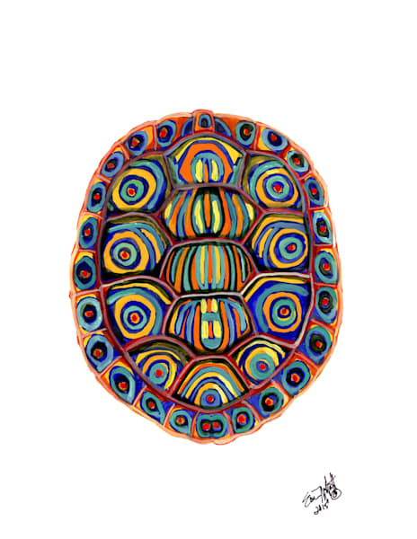 Painted Turtle Shell by Erin McNutt