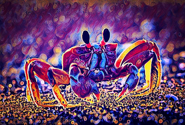 Ghost Crab by Erin McNutt
