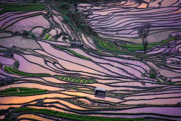 Laohuzui Detail