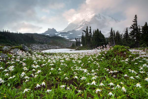 Avalanche Photograph for Sale as Fine Art