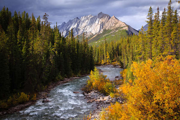 Fall Colors on the Maligne River
