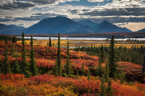 On the Banks of the Susitna