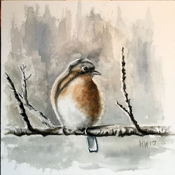 Baby Blue, watercolor painting of young blue bird by Holly Whiting