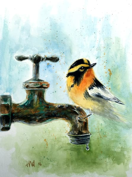 Blackburnian Warbler, watercolor painting