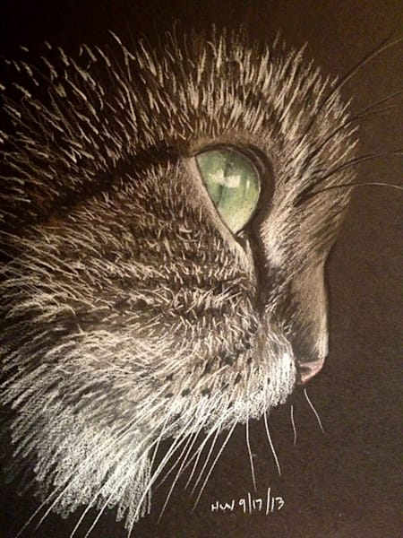 Cat Profile, pastel art by Holly Whiting, cat painting