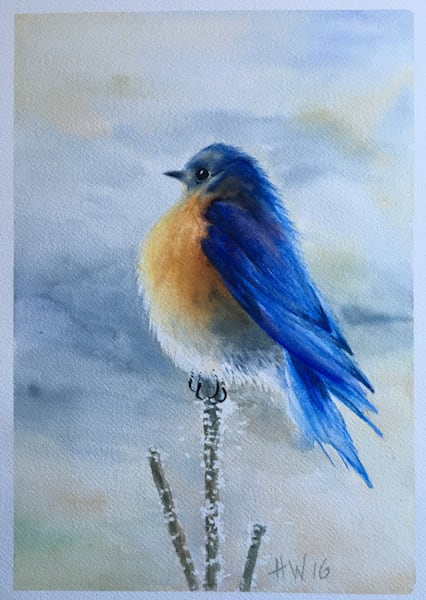 Fat Bluebird Art | Holly Whiting Art