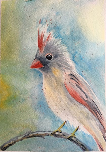 Female Cardinal Art | Holly Whiting Art
