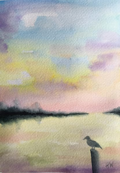 Gull At Sunset Art | Holly Whiting Art