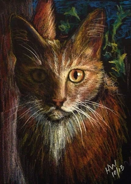 Cat pastel drawing for sale