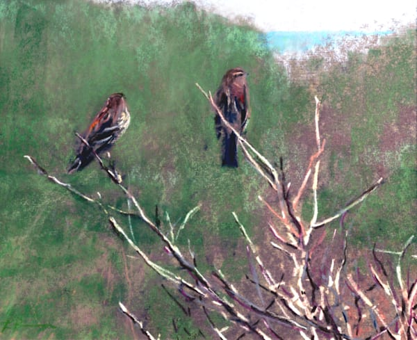 landscape painting oregon coast  birds