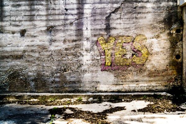 Yes  Photography Art | Sage & Balm Photography