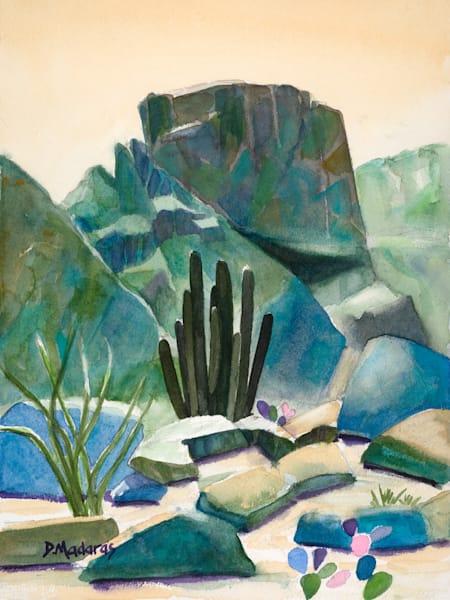 Summer Desert | Southwest Art Gallery Tucson | Madaras
